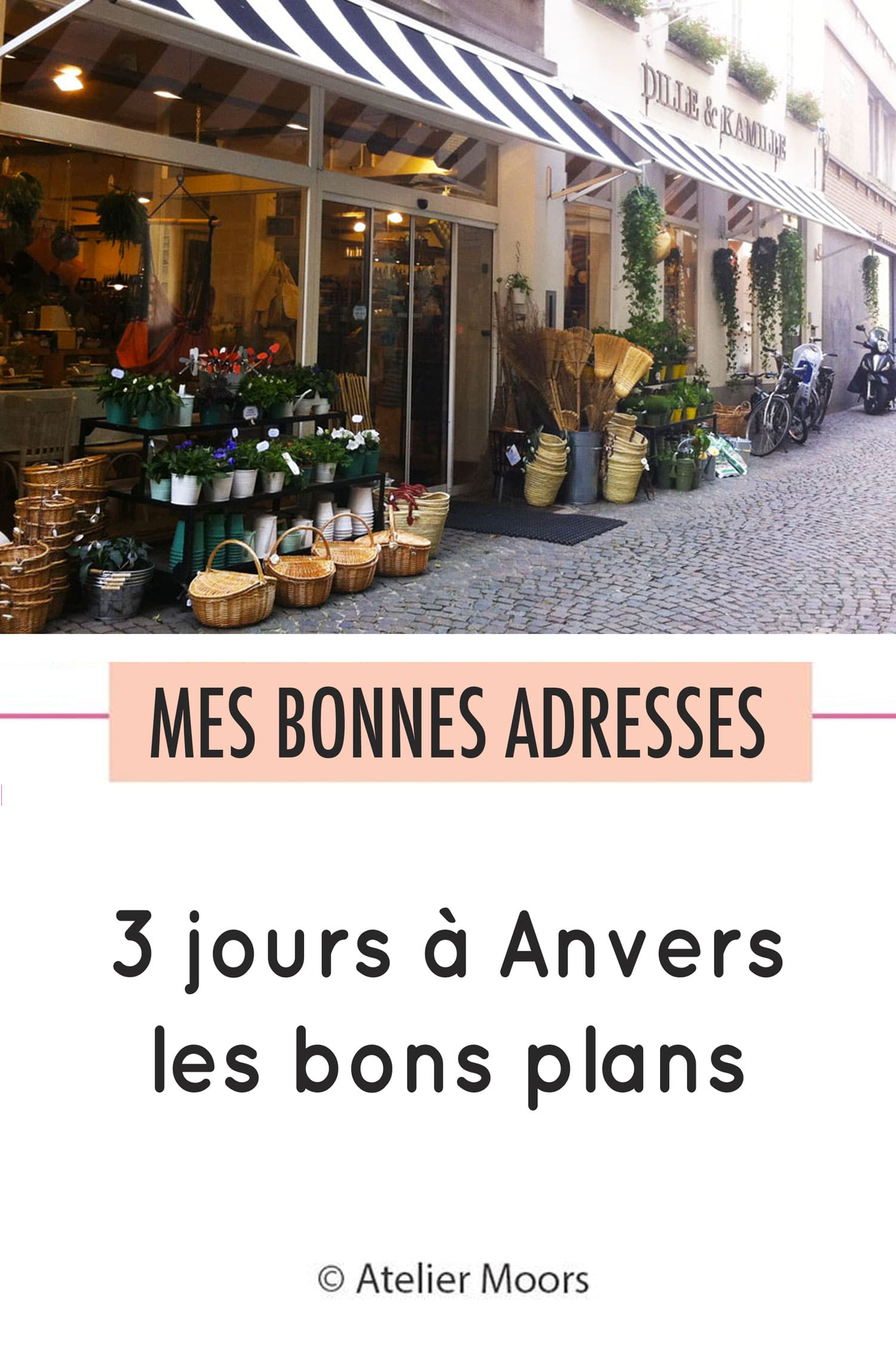 anvers les bons plans
