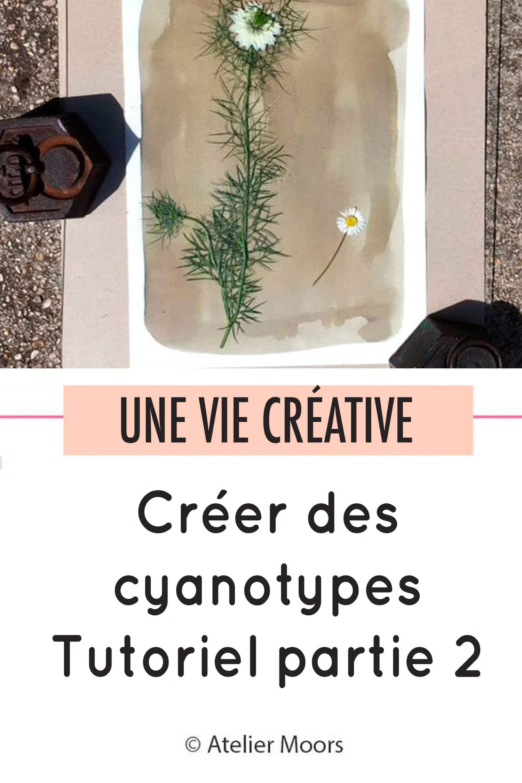 Créer des cyanotypes partie 2 pinterest