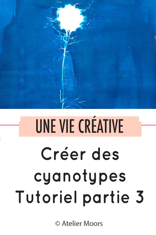 cyanotypes partie 3 pinterest
